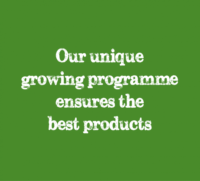 our unique growing programme ensures the best products