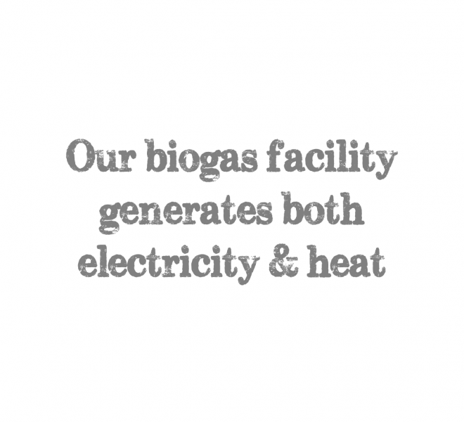 our biogas facility generates both electricity & heat